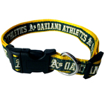 ATH-3036 - Oaklands A`s - Dog Collar
