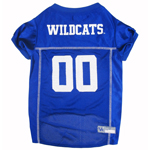 KY-4006 - University of Kentucky - Football Mesh Jersey