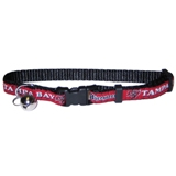 TBB-5010 - Tampa Bay Buccaneers - Cat Collar