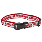 WI-3036 - Wisconsin Badgers - Dog Collar