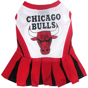 Chicago Bulls - Cheerleader