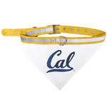 Doggie Nation Collegiate California Golden Bears Collar Bandana - Large