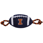 Doggie Nation Collegiate Illinois Fighting Illini Nylon Football