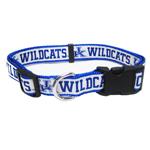 Doggie Nation Collegiate Kentucky Wildcats Collar - Large