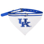 Doggie Nation Collegiate Kentucky Wildcats Collar Bandana - Large