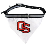 Doggie Nation Collegiate Oregon State Beavers Collar Bandana - Large